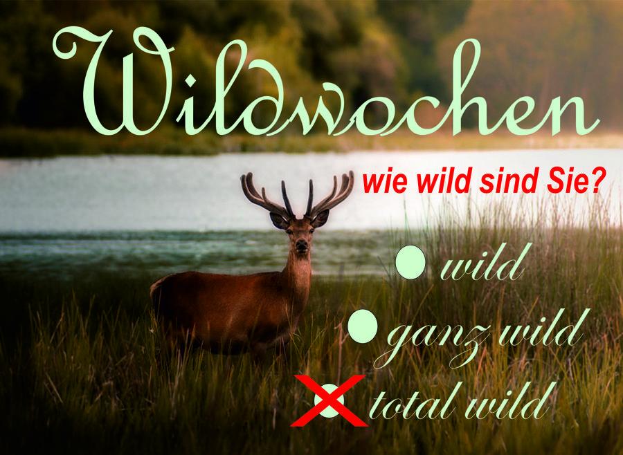 wildwochen2019-900