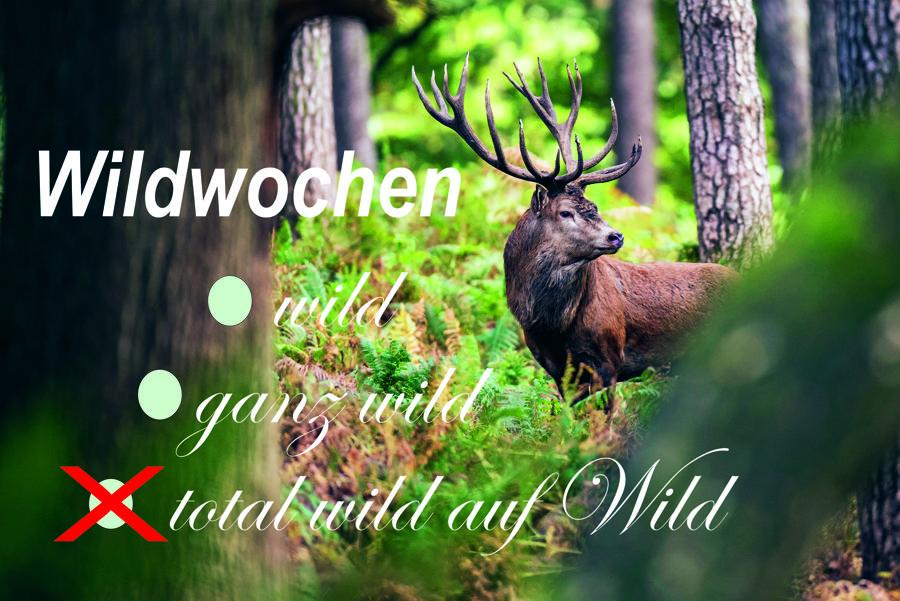 wildwochen2020